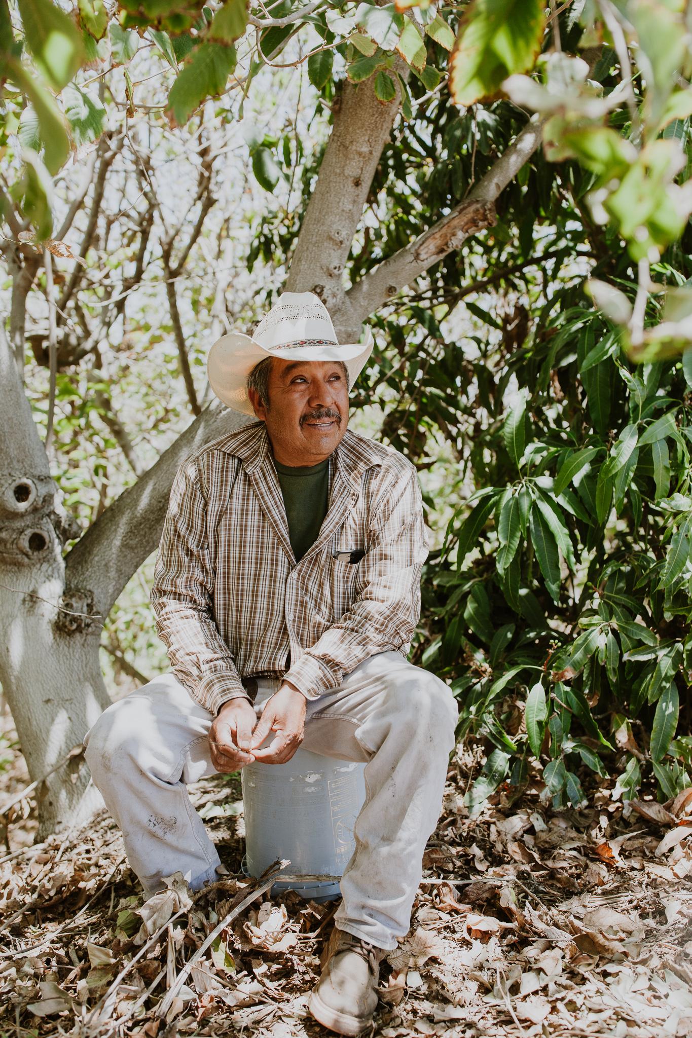 A man sitting under a tree