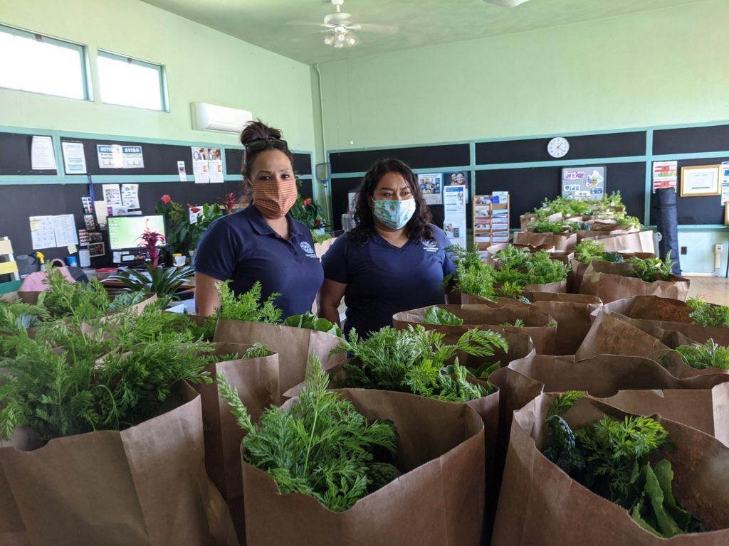 Botanical Community Development Initiatives (BCDI)