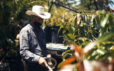 FarmWorker CARE Coalition
