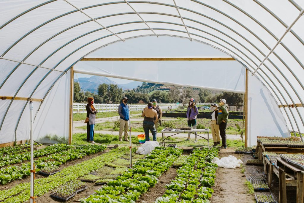 Image of people standing and talking in front of a nursery
